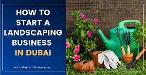How To Start a Landscaping Business in Dubai